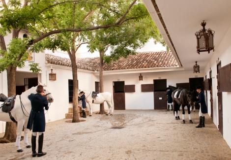 Patio de caballos