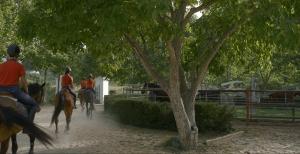 Escuela de Equitación RMR