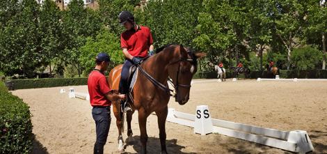 equitacion_cursos_tecnico_01